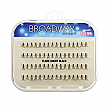 BROADWAY INDIVIDUAL FLARE SHORT/12PC
